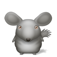 chinchilla_small